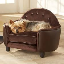 furniture style dog beds wayfair ultra plush headboard sofa 3 bedroom house for rent big dog furniture