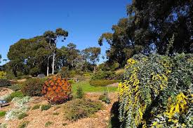 Small Picture 10 More Top Gardens in Greater Melbourne Melbourne