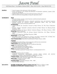 Best Resume Template For It Professionals Resume Template For It