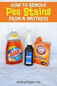 pet stains on wool carpet how to remove stains from your mattress and remove the