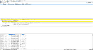 Packet What Is This Address I Received From Wireshark