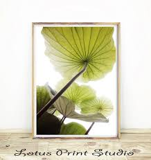 luxury lotus leaves wall art gift wall art collections  on lotus leaf wall art with contemporary lotus leaves wall art image the wall art decorations