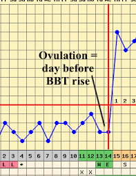 Body Temperature During Ovulation Chart Pin On Babies And How To Make Them
