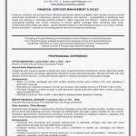 Social Media Resume Sample Format Writing Resume Resume Example ...