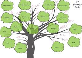 Family Tree Picture Template Family Tree Template For Kids 15 Designs Showing 3 4