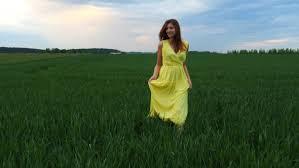 tall green grass field. Field Tall Grass Hill Sunset Night Play Green
