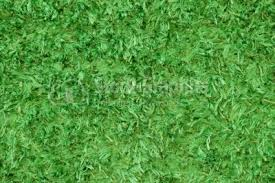 green carpet texture. Green Carpet Texture Background