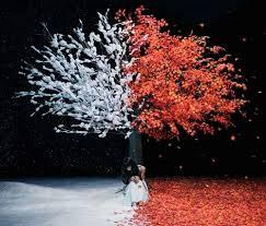 <b>everlasting snow</b>