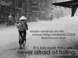 Beautiful Quotes On Rain Best of Rain Quotes Maybe Raindrops Are The Bravest Thing Created By God