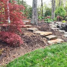 plant ferns tiarella lenten rose or ajuga around the steps for the woodland effect it is heavy work so get a few people on the project and take it slow