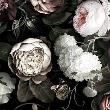 Black Floral Desktop Background ...