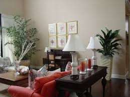 Indoor Plants Living Room Living Room Indoor Plants Add Brightness To Your Space For Living