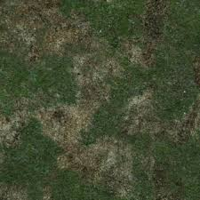 The New World Procedural Textures