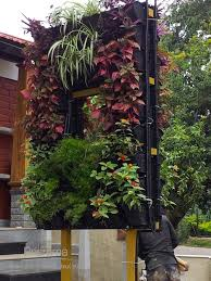Small Picture Garden Design In India Top Balcony Garden Ideas India Easy And