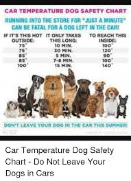 Car Temperature Dog Safety Chart Running Into The Store For