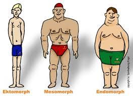 Diät kraftsport