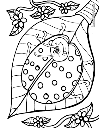Small Picture INSECT coloring pages 30 free Insects and Bugs coloring pages
