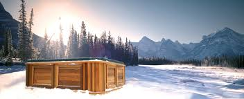 Arctic Spas - Engineered for Extreme Climates ...