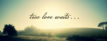 True Love Waits Quotes Enchanting True Love Waits Quote Quote Number 48 Picture Quotes