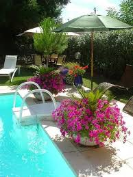 Best 25 Pool Decor Ideas Ideas On Pinterest Pool Cleaning Tips Swimming Pool  Decor Ideas