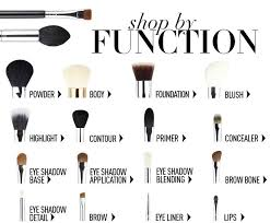 looking for a specific type of makeup brush utilize our by function