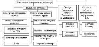 Реферат Функциональное разделение труда и организационная  Структура службы управления персоналом Нефтегаз СПб