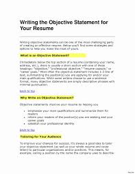 Resume Objective Statement Examples Beautiful Resume Example 2015