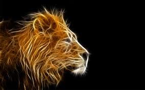 lion wallpaper. 3d animal wallpapers- lion wallpaper