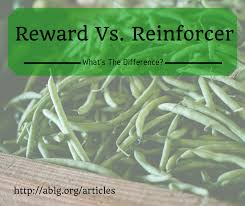 Rewards Versus Reinforcers In Behavior Therapy|Nj