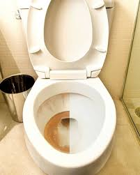 toilet rust stains before and after using iron out rust stain remover