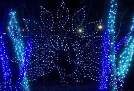 St Louis Zoo Wild Lights Holiday Light Displays Around St Louis Will Make Your