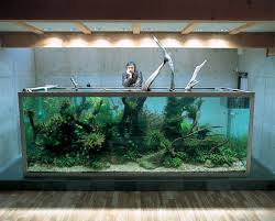 Accessories: Aquarium By Takashi Amano - Aquariums
