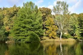 İstanbul'un müze parkı Atatürk Arboretumu - Seyahat Haberleri