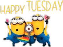 happy happytuesday tuesday Sticker by Darietta8177365