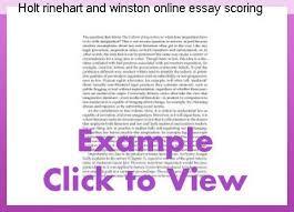 english essay my school holiday