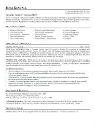 Project Manager Resume Samples Delectable ☠ 40 Entry Level Project Manager Resume