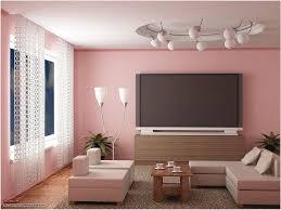 the scheme rose gold wall paint decor