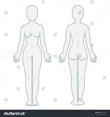 Nude Female Body Front Back View Stock Illustration Royalty Free
