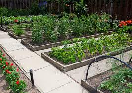 Small Picture Raised Vegetable Garden Boxes gardensdecorcom