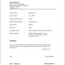 31 Best Of Simple Resume Format Download In Ms Word Stock J1t