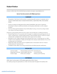 Resume Sample Word Accountant Resume Sample Accounting Cv Template Word Download Doc 20