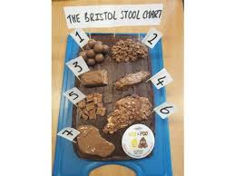 Bristol Stool Chart For Kids Bristol Stool Chart Cake Recipe Eric