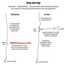 How To Rig A Drop Shot For Soft Plastics Or Live Bait Drop