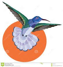 татуировка колибри картина акварели редакционное стоковое
