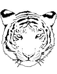 Small Picture Tiger Portrait coloring page Free Printable Coloring Pages