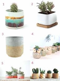 small succulent planters small pots for succulents home interiors dubai small succulent planters