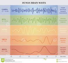 Human Brain Waves Diagram Chart Illustration Stock