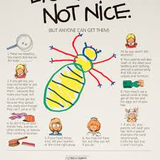 How Long Do Lice Live Furniture Luxury Ways to Treat Head Lice