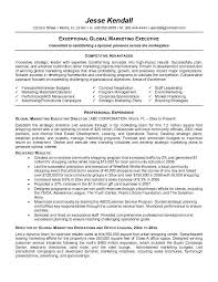 Example Executive Resume Executive Sales Resume Example Sales