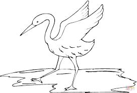 Disegno Di L Uccello Gru Da Colorare Disegni Da Colorare E Con